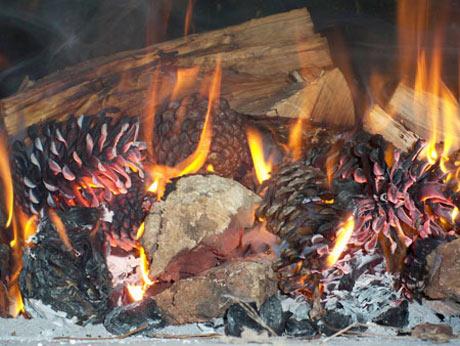 barbecue-met-dennenappels