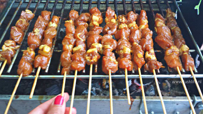 lushlife-sate-grillen